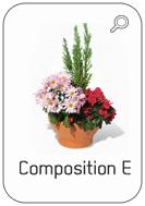 Catalogue fleurissement de tombe été En sa mémoire