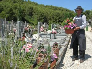 Livraison de fleurs dans les cimetières